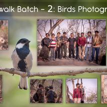 Workshop 2: Birds