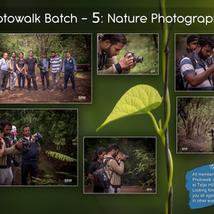 Workshop 5: Nature