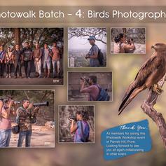 Workshop 4: Birds