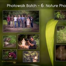 Workshop 6: Nature