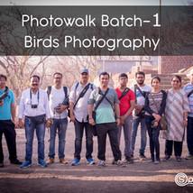 Workshop 1: Birds