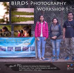 Workshop 15: Birds