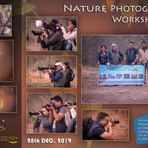 Workshop 17: Nature
