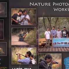 Workshop 14: Nature