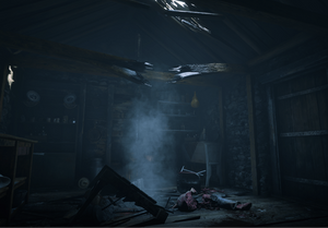 rdr2_poi_47_meteor_house_02.png