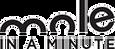 Logo Mole in a minute