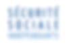 Logo_SSI_Vecto_Bleu_2_coul_Fond_Blanc.pn