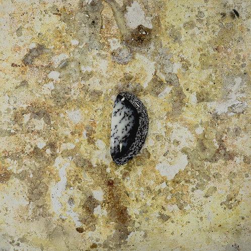 silver // dendritic agate