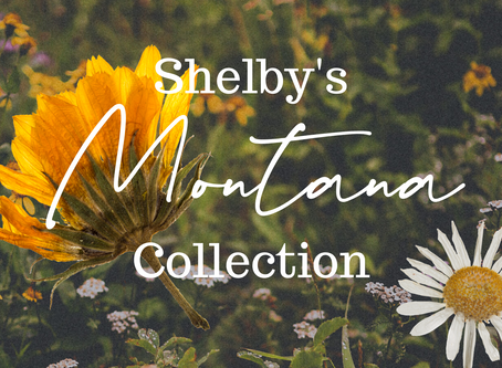 An Interview with Shelby Johnson