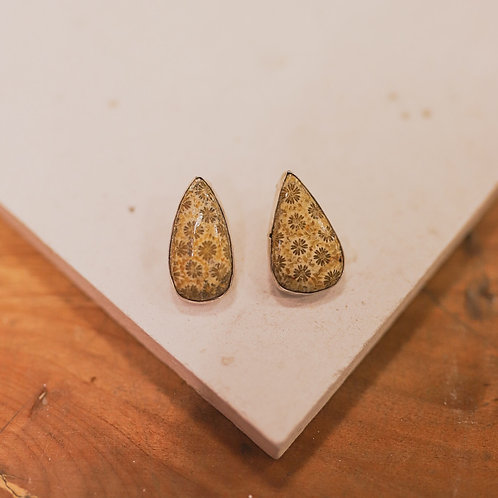 silver // coral fossil // earrings