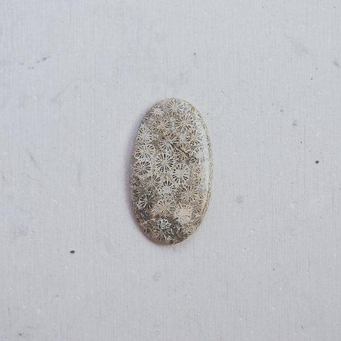 silver fossil gem