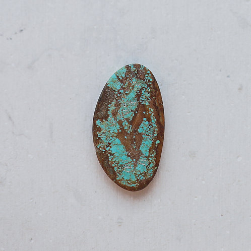 silver turquoise gem