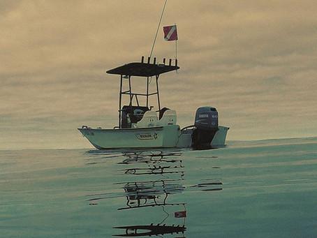 Boston Whaler dive boat