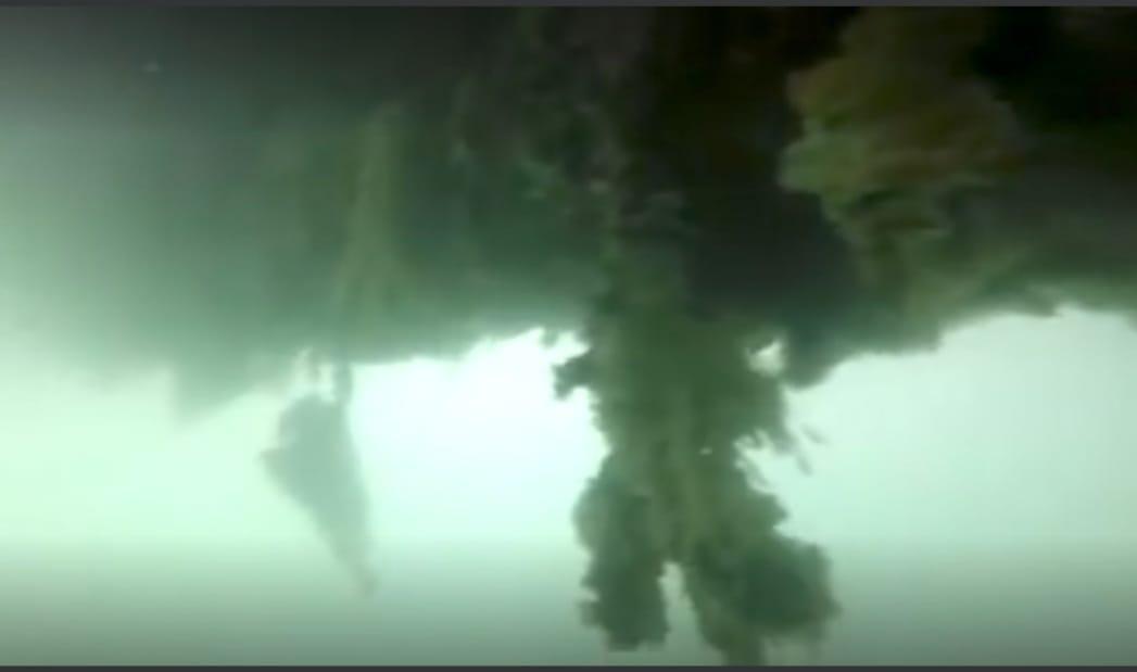 Underwater hull inspection/maintenance