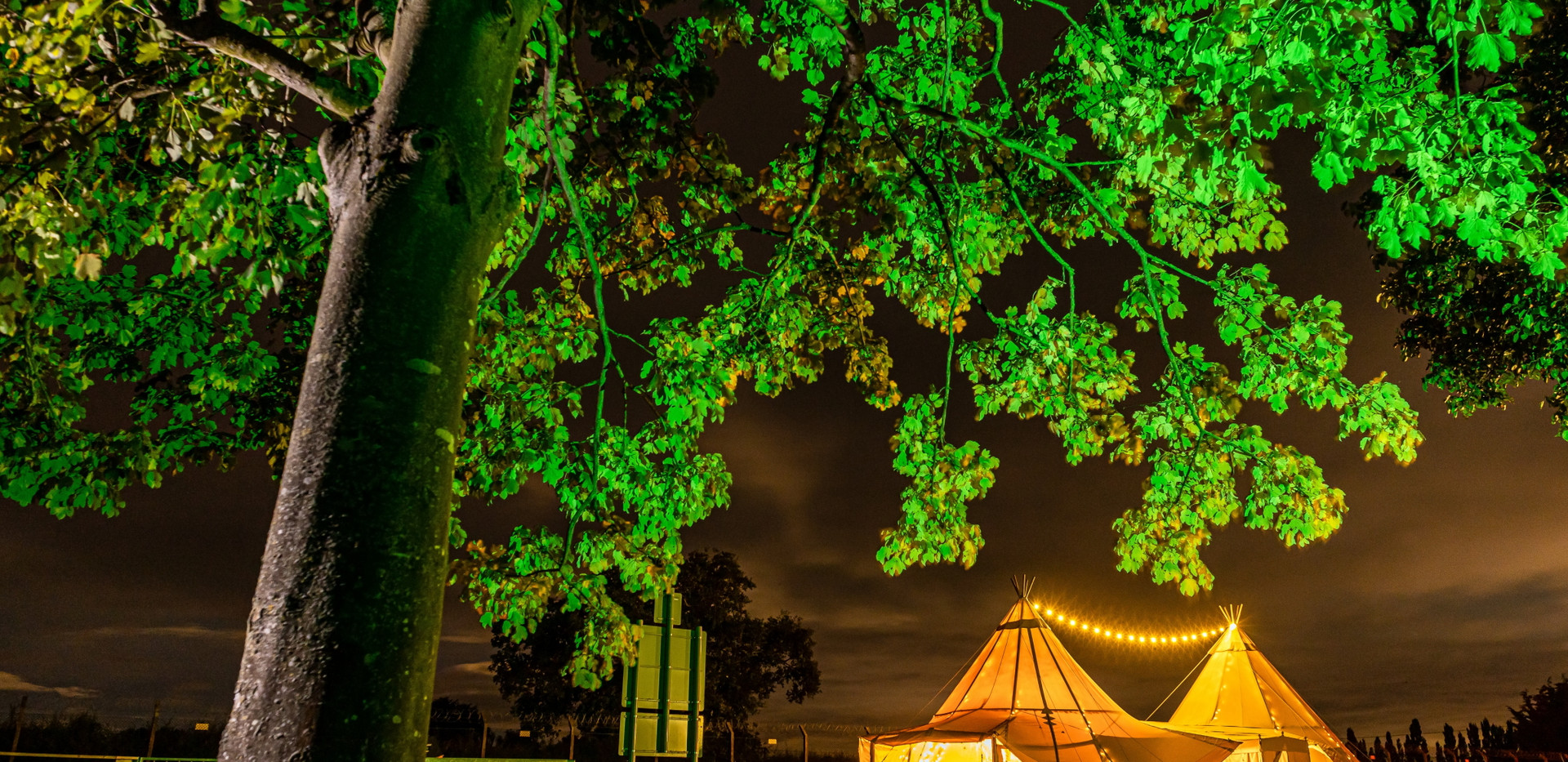 Tree and Tepees at Night