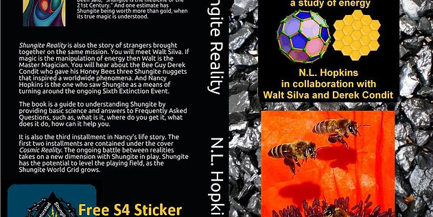 Shungite Reality Book