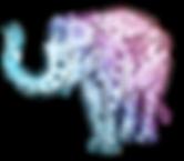 elephant-945577_1920.png