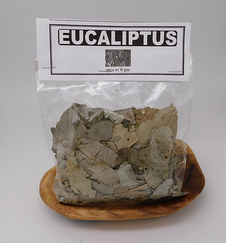 Dried Eucalyptus Leaf