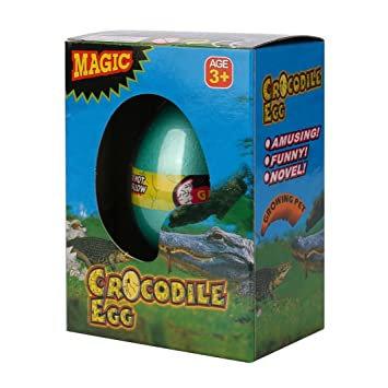 Magic Crocodile Egg