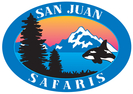 SJS Logo_edited.png