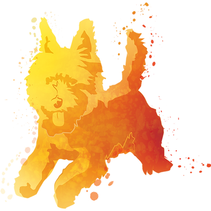 無穀小型犬-黃.png