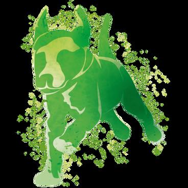 無穀幼犬-綠.png