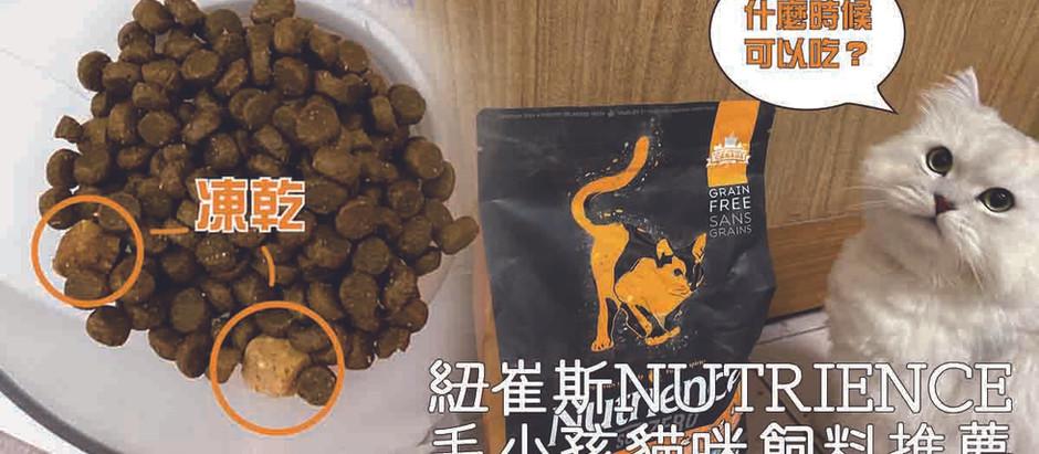 【寵物】紐崔斯Nutrience|毛小孩貓咪飼料推薦
