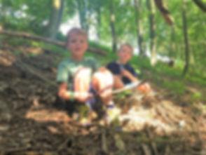 Wald (3)_b.jpg