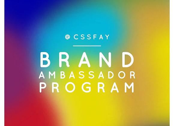 CSS Brand Ambassador program for businesses
