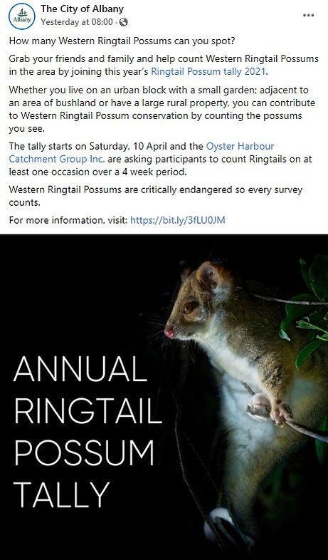 ringtail possum tally.jpg