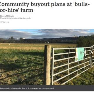 BBC News snapshot 15.11.20.jpg