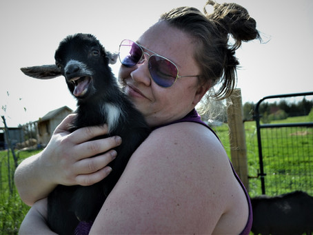 Goat Yoga With Mikenze 2021