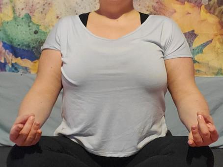The Eight Limbs of Yoga Pt 3
