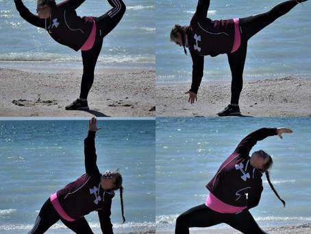 The Eight Limbs of Yoga Pt 2