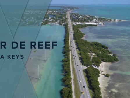 Tour de Reef