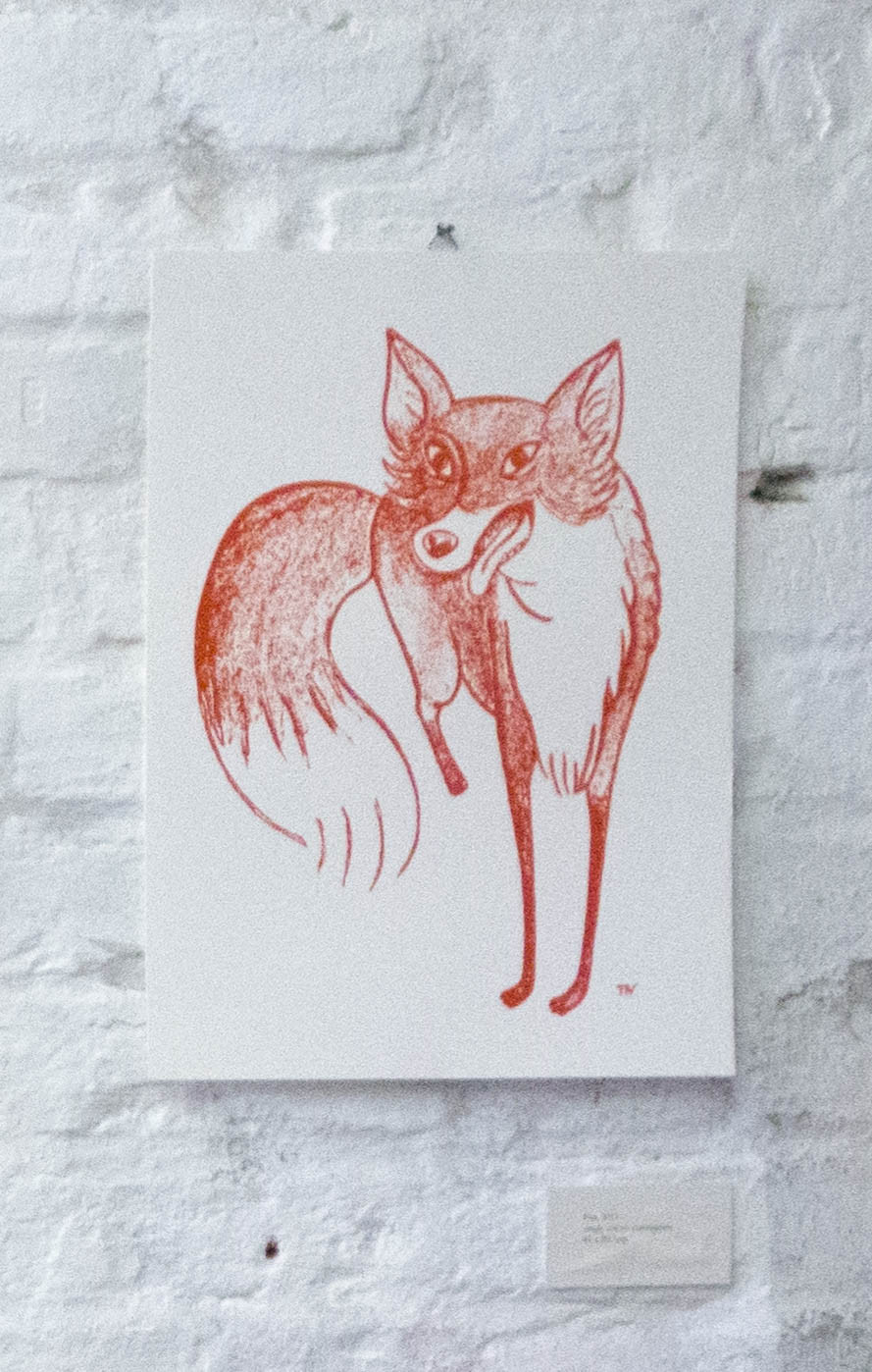 Fox, 2014