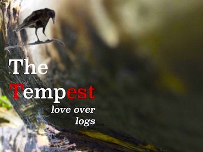 Crow Tree Theatre's The Tempest