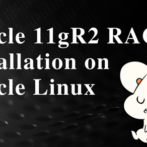 Oracle 11gR2 RAC Installation on Oracle Linux 6.5