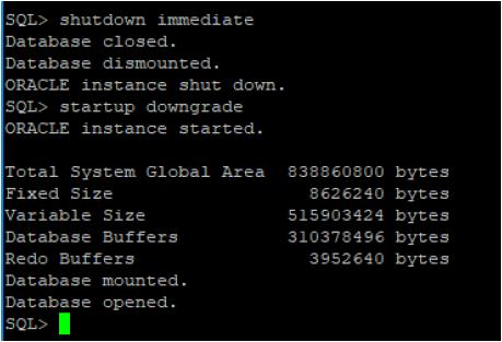 27-oracle-shutdown