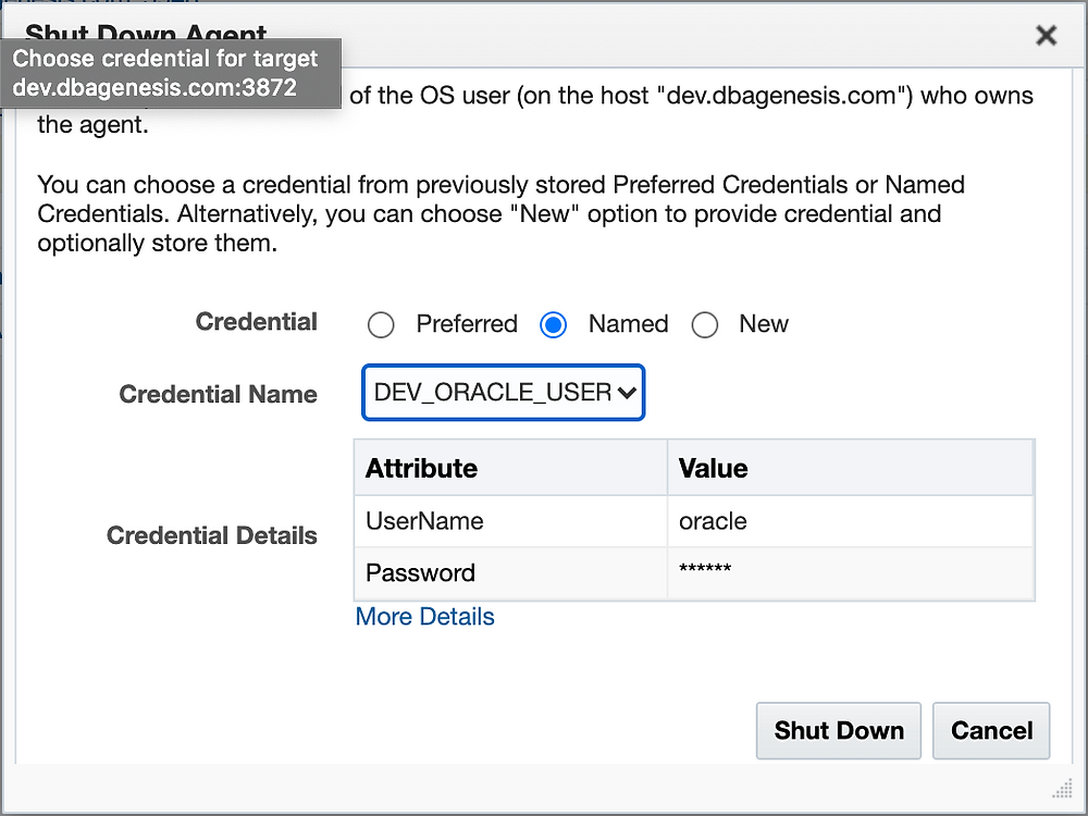 oem-agent-shudown-named-credentials