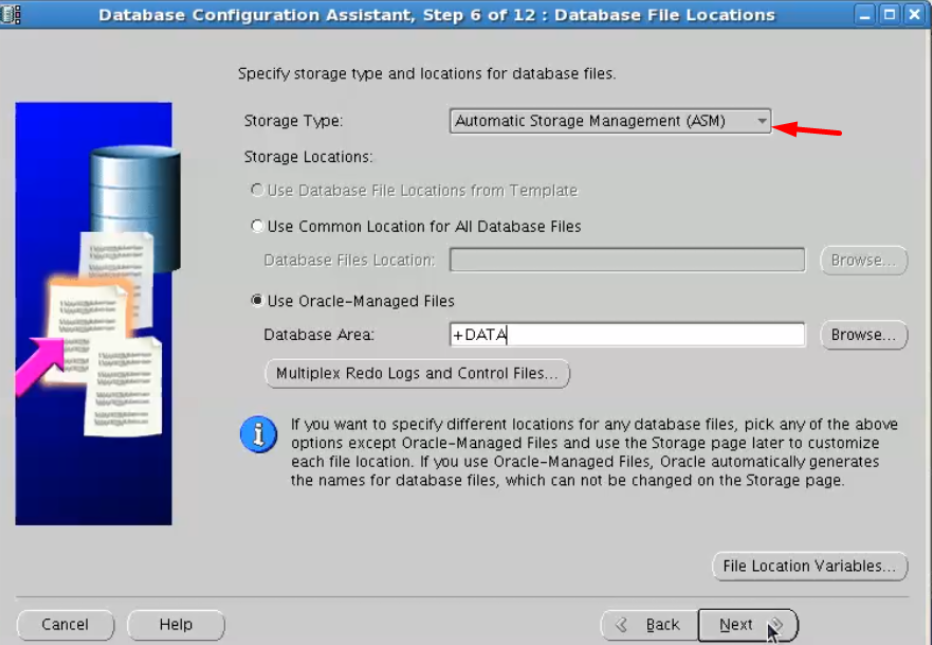 database configuration assistant - automatic storage management asm