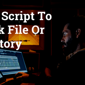 Shell Script to Check File or Directory