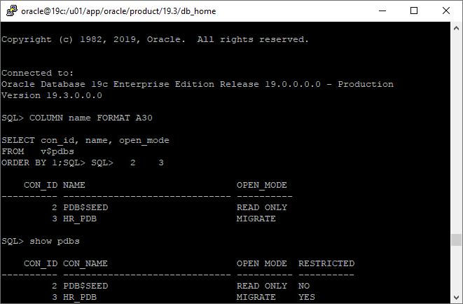upgrade 19c pdb - Run dbupgrade utility