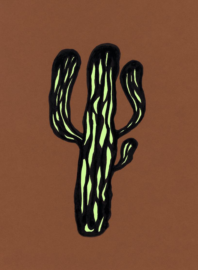 Saguaro #6