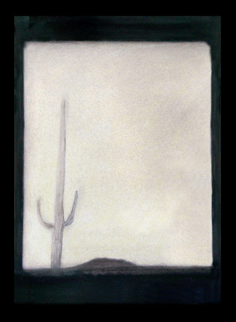 Saguaro #12