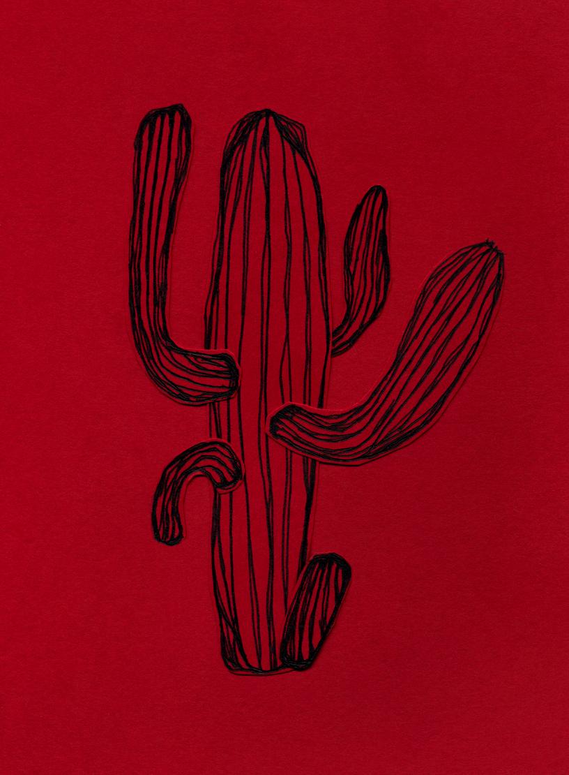 Saguaro #11