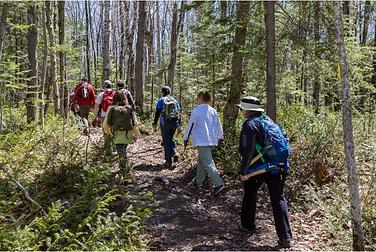 Voyageur Trail crew clearing the trail. ©GaryMcGuffin