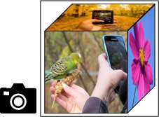 """H.O.P.E and St Ursula's College Youth Summit """"Citizen Science"""" style PhotoVoice Project"""