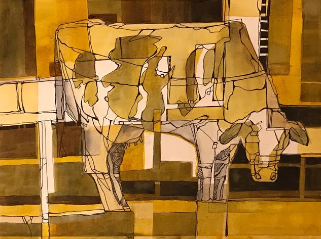 Illusionary Cow