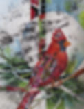 Cardinal Creation_1.jpg